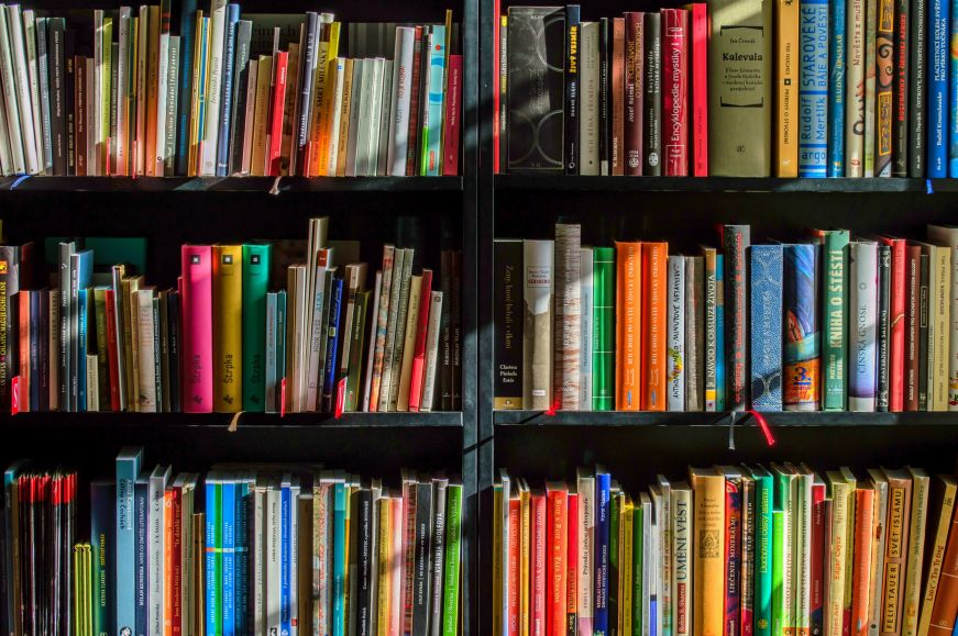 Shelf of colorful books