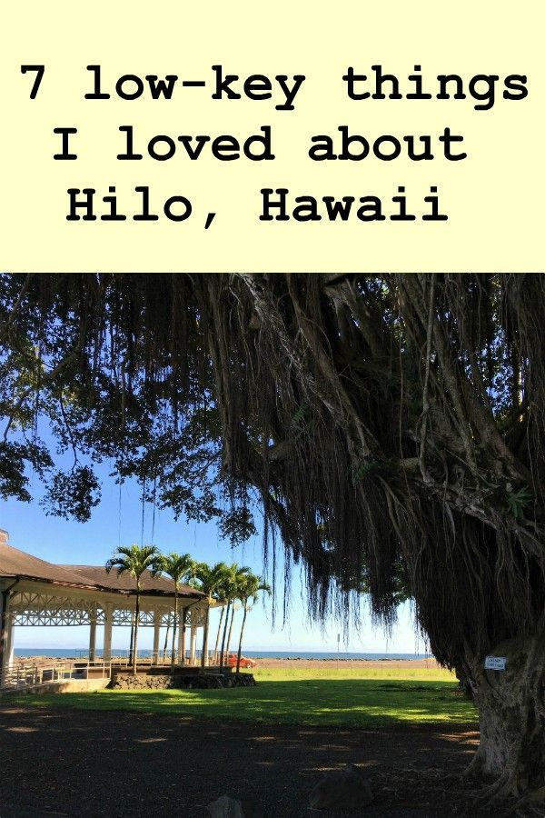 "Picture of banyan tree with pavilion and ocean in the background with the text ""7 low-key things I loved about Hilo, Hawaii"""