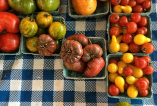 Boxes of multicolored tomatoes on a gingham tablecloth